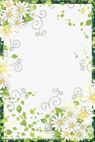 Beautiful Flowers Border Frame PNG