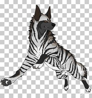 Striped Hyena Spotted Hyena PNG