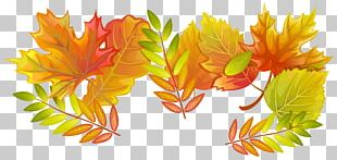 Maple Leaf Paper Autumn PNG