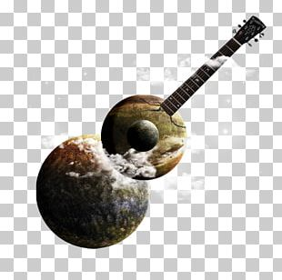 Plucked String Instrument String Instruments Musical Instruments PNG