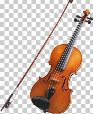 String Instrument Violin Musical Instrument Family PNG