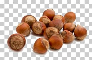 Hazelnut Food Almond PNG