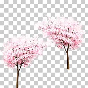 Cherry Blossom Laptop MacBook Air Spring PNG