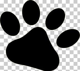 Dog Paw Bear PNG