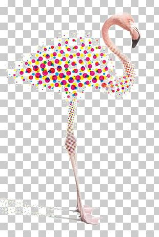 Graphic Design Flamingo Illustration PNG
