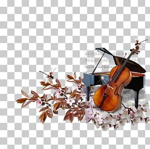 Cello Piano Violin Musical Instruments PNG