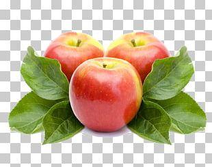 Apple Juice Apple Cider Vinegar Fruit Shampoo PNG