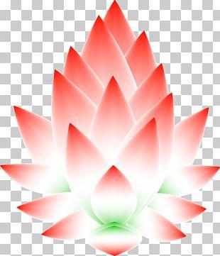 Nelumbo Nucifera Symbol Carta Astral Astrology PNG