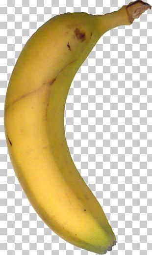 Cooking Banana Public Domain Copyright PNG