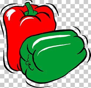 Bell Pepper Vegetable Paprika PNG