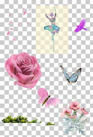 Floral Design Ballet Dancer Art Rose Family Watercolor Painting PNG