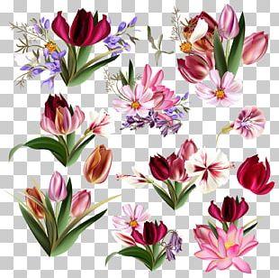 Floral Design Tulip Flower PNG