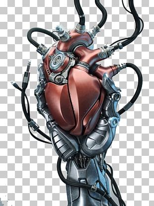 Artificial Heart Valve Anatomy PNG