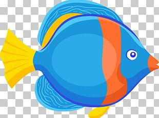 Fish Animation Drawing PNG