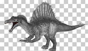 Tyrannosaurus Spinosaurus ARK: Survival Evolved Giganotosaurus Velociraptor PNG