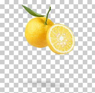 Citrus Junos Fruit Lemon Hair Clementine PNG