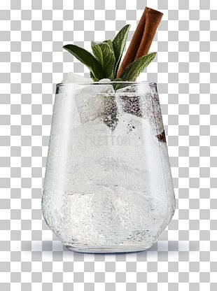 Gin And Tonic Tonic Water Cocktail Distilled Beverage PNG