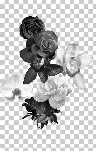Black And White Flower Monochrome Photography PNG