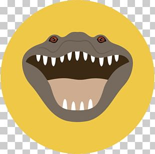 What Is A Reptile? Alligator Crocodile Snake PNG