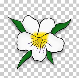 Zeta Tau Alpha Floral Design Cut Flowers Crown PNG