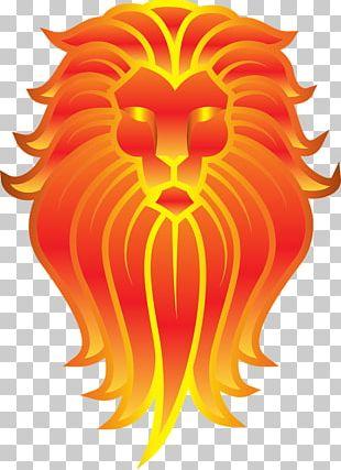Lionhead Rabbit Tiger Felidae Cat PNG