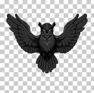 Owl Bird Of Prey Beak Escape From Tarkov PNG