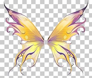 Decorative Wings PNG