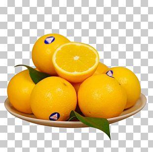 Clementine Australia Tangerine Meyer Lemon PNG
