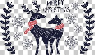 Cat Santa Claus Thanksgiving Christmas Card PNG