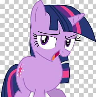 Twilight Sparkle Pony Rainbow Dash Welcome To The Crystal Empire! PNG