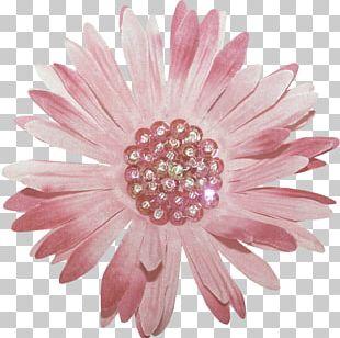 Cut Flowers Chrysanthemum Petal Garden Roses PNG