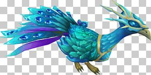 RuneScape Bird Parrot Feather Peafowl PNG