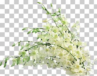 Floral Design Flower Bouquet LiveInternet Cut Flowers PNG