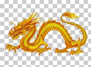 China Chinese Dragon Japanese Dragon PNG