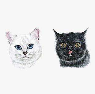 Hand Painted Watercolor Cute Cat Head Portrait PNG