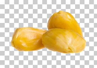 Close-up Auglis Tripod PNG