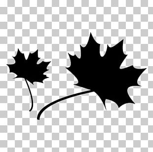 Maple Leaf Computer Icons Heart PNG