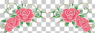 Portable Network Graphics Graphics Flower Garden Roses PNG