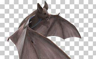 Desktop Halloween Bat PNG
