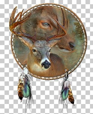 Oil Painting Art Deer Dreamcatcher PNG