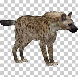 Striped Hyena Zoo Tycoon 2 PNG