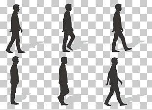 Walk Cycle Walking Euclidean PNG