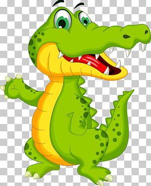 Crocodile Alligator Cartoon Illustration PNG