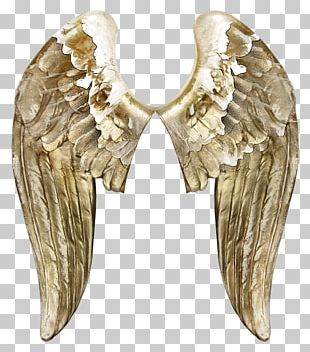 Angels Wing Butterfly PNG