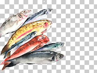 Pacific Saury Sardine Fish Products Mackerel Oily Fish PNG