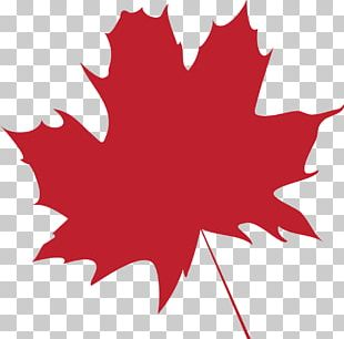 Maple Leaf Flag Of Canada Color PNG