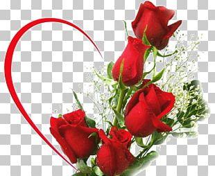Rainbow Rose Flower Bouquet Desktop PNG