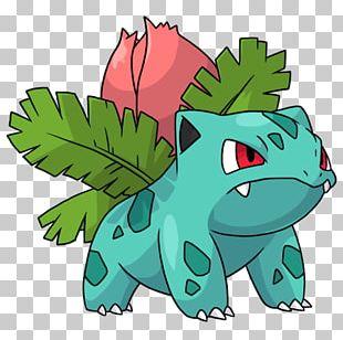 Pokémon X And Y Pokémon Red And Blue Pokémon GO Ivysaur Venusaur PNG