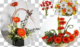 Transvaal Daisy Floral Design Cut Flowers Flower Bouquet PNG