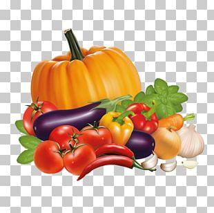 Vegetable Chili Pepper Bell Pepper Stock PNG